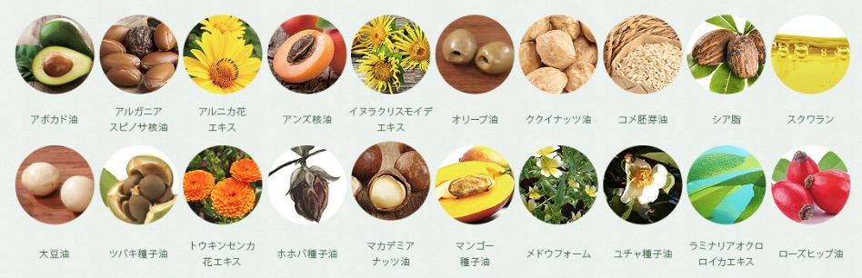 botanist3.jpg