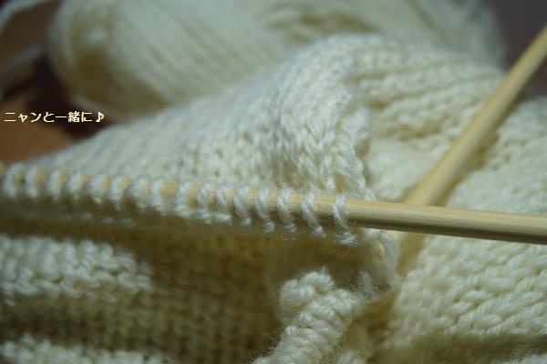 219毛糸