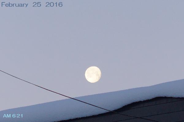 月も見えた♪