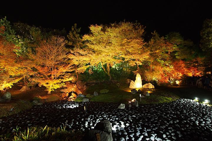 20151129_hogonin_temple-03.jpg