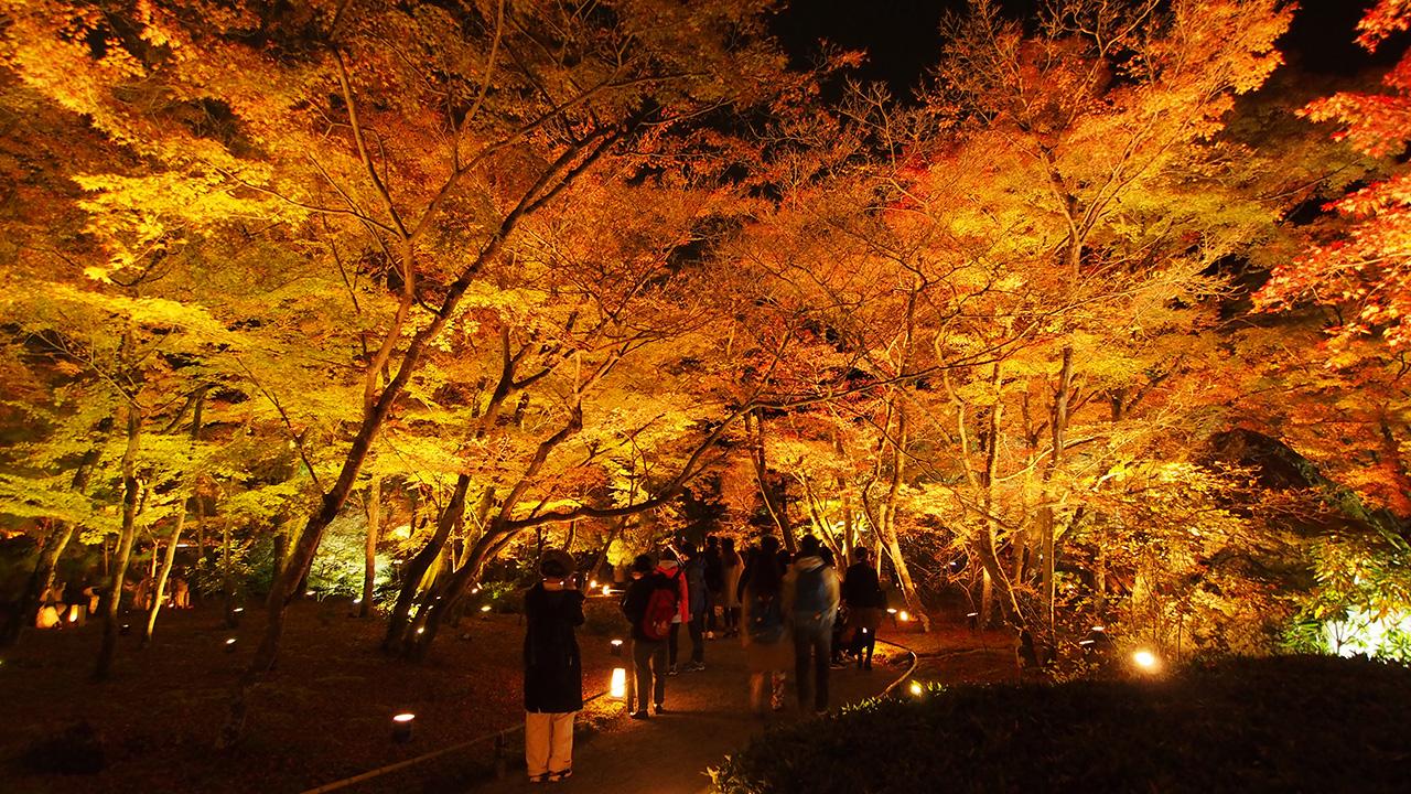 20151129_hogonin_temple-16.jpg