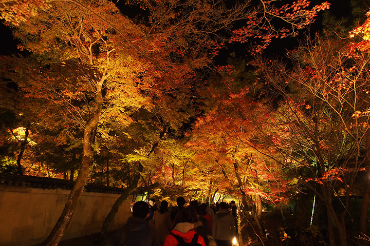20151129_hogonin_temple-18.jpg