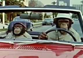 チンパン探偵その1