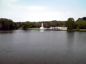 長居公園植物園の噴水(2013年撮影)