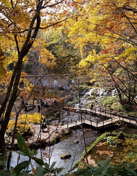 151021京極ふきだし公園-2