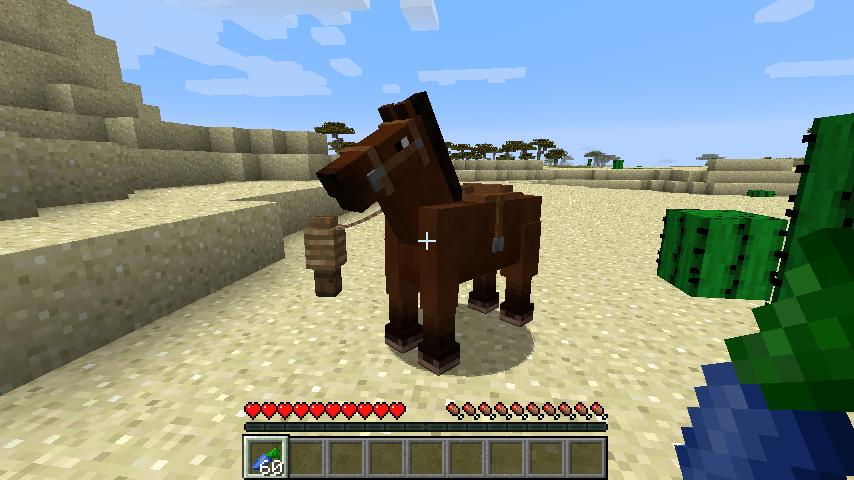 Horse Upgrades-8
