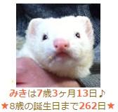 2015y12m27d_045143475.jpg