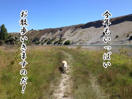 羊の国のラブラドール絵日記シニア!!「もちこし2016年」2
