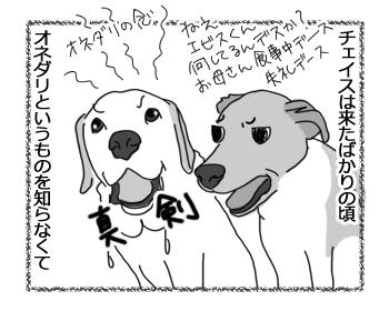 羊の国のラブラドール絵日記シニア!!「うる目くん」1