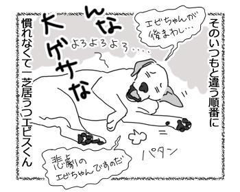 羊の国のラブラドール絵日記シニア!!「エビス芝居」2