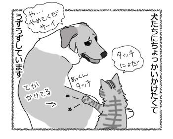 羊の国のラブラドール絵日記シニア!!「こわいものしらず」2