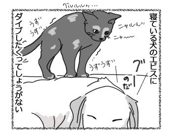 08022016_cat4.jpg