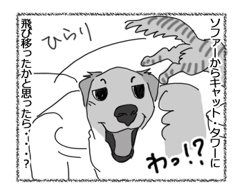 羊の国のラブラドール絵日記シニア!!「引き際が肝心」2