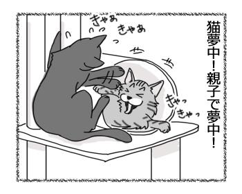 羊の国の猫日記「想定外に・・・?」6