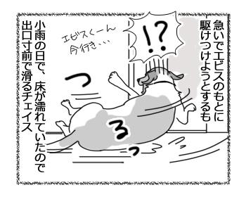 羊の国のラブラドール絵日記シニア!!「チェイスの失敗」2