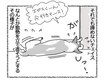 羊の国のラブラドール絵日記シニア!!「チェイスの失敗」3
