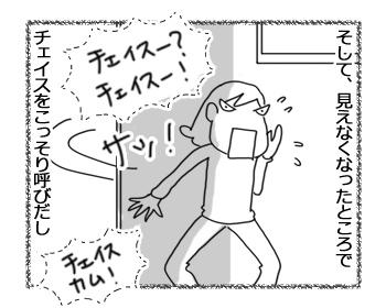羊の国のラブラドール絵日記シニア!!「酷暑の小芝居」3
