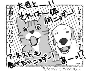 11022016_cat3mini.jpg
