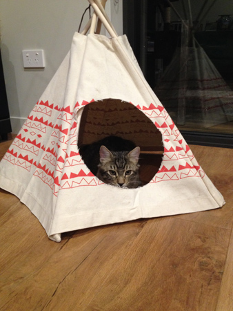 羊の国のラブラドール絵日記シニア!!「好評!猫用テント」5
