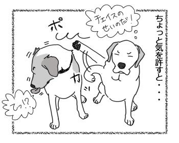 羊の国のラブラドール絵日記シニア!!「ダンスィー」3