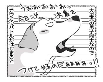 羊の国のラブラドール絵日記シニア!!「暗黙のルール」1B