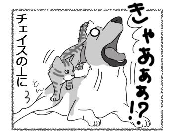 羊の国のラブラドール絵日記シニア!!「やんちゃ炸裂!アーネスト」3