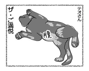 羊の国のラブラドール絵日記シニア!!「はじめての・・・!」2