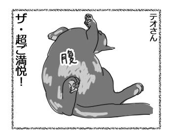 羊の国のラブラドール絵日記シニア!!「はじめての・・・!」4