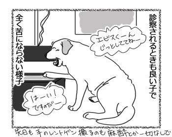 羊の国のラブラドール絵日記シニア!!「獣医さん肝試し」2