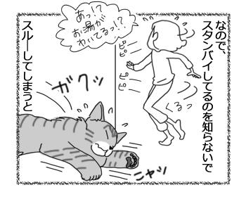 羊の国のラブラドール絵日記シニア!!「気遣いと小芝居」3