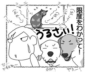 羊の国のラブラドール絵日記シニア!!「お外中毒」4