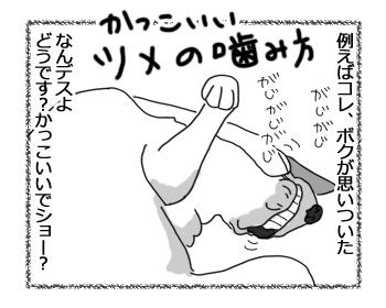 羊の国のラブラドール絵日記シニア!!「かっこいいボク」3