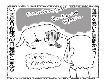 羊の国のラブラドール絵日記シニア!!「かわいそうな俺様」4