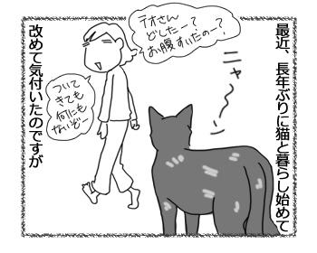 羊の国のラブラドール絵日記シニア!!「猫って・・・」1