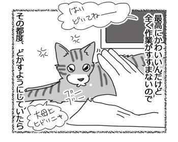 羊の国のラブラドール絵日記シニア!!「贅沢な悩み」2