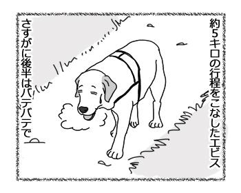 羊の国のラブラドール絵日記シニア!!「ファイトー!いっぱぁつ!」1