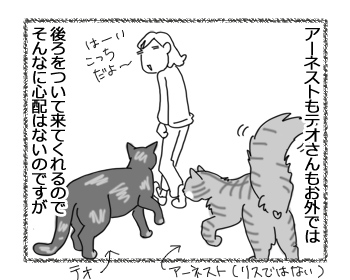 29022016_cat1.jpg