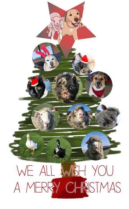 羊の国のラブラドール絵日記シニア!!「今年もみんなでメリークリスマス」カード