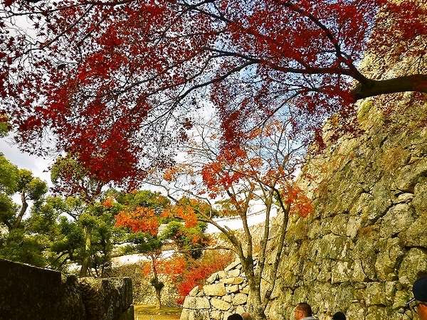 姫路城 189