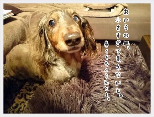 fc2_2016-01-15_04.jpg