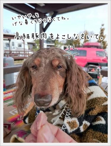 fc2_2016-01-25_11.jpg