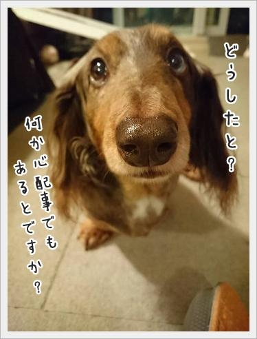 fc2_2016-02-15_01.jpg