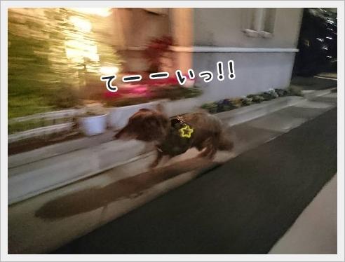 fc2_2016-02-16_03.jpg