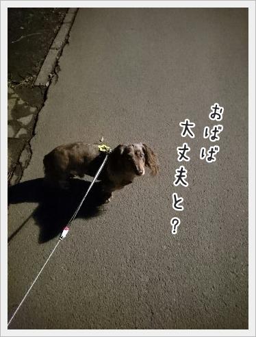 fc2_2016-02-25_02.jpg