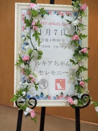 ルキアちゃん葬儀