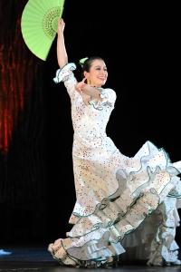 武田泉スペイン舞踊教室