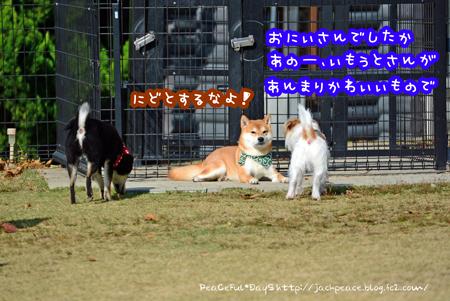 151213_yuasa6.jpg
