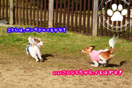 151218_yuasa19.jpg