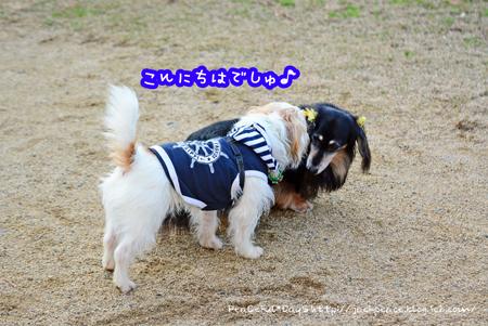 151224_yuasa12.jpg