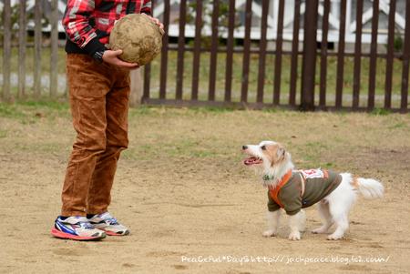 160103_yuasa7.jpg